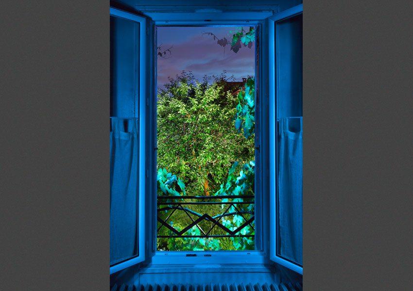 Vu de ma fenêtre, l'été, 2010