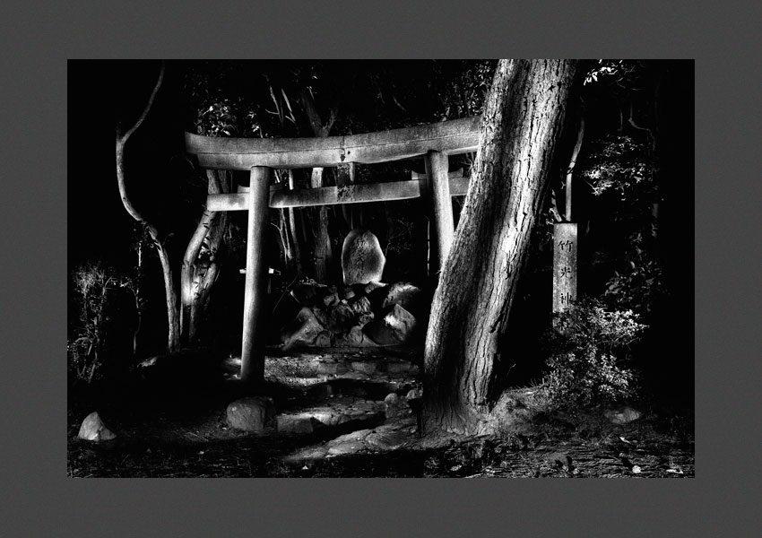 Japon, 1994