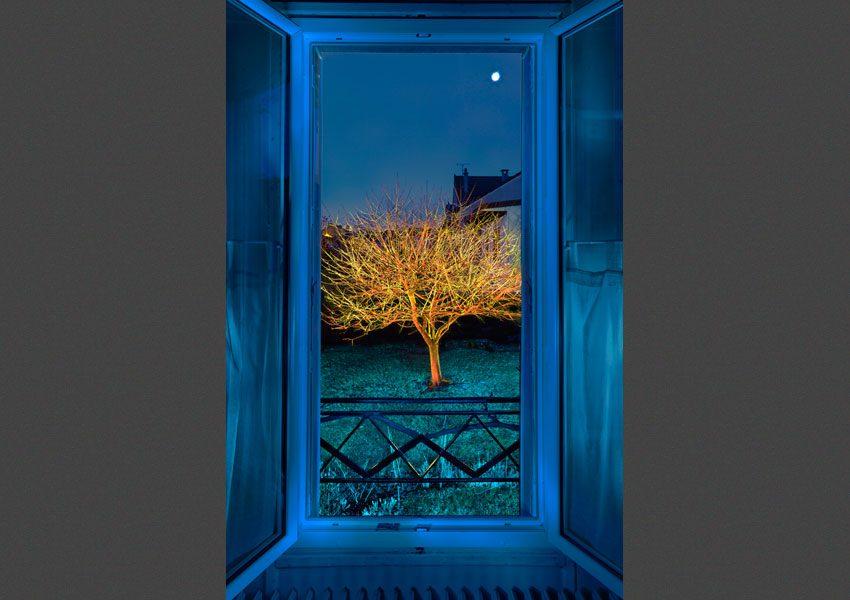 Vu de ma fenêtre, l'Hiver N°1, 2010